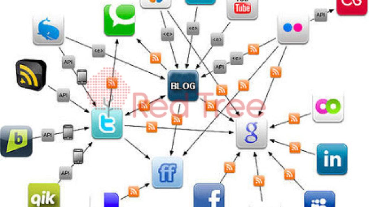 6 Jejaring Sosial Populer Yang Wajib Dimiliki - Digital Agency ...